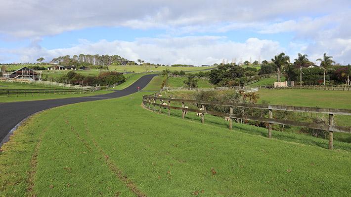rural lifestyle subdivisions - Kumeu Lifestyle Subdivision