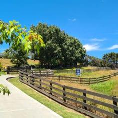 Rural Subdivision Coatesville