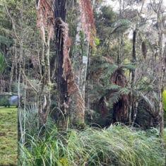 Wetlands Environment and Landowner Advantages